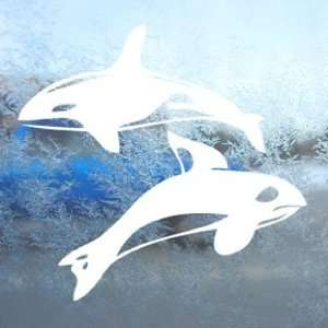 Orca Killer Whales White Decal Car Window Laptop White