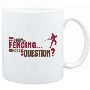 New  To Study Or Fencing  What A Stupid Question