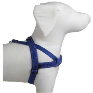 EzyDog 807203105 blue Quick Fit Dog Harness in Blue Size